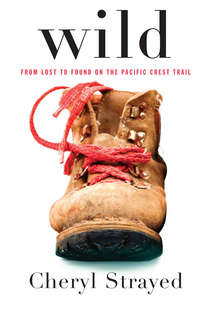 Wild: from Lost to Found on the Pacific Trail